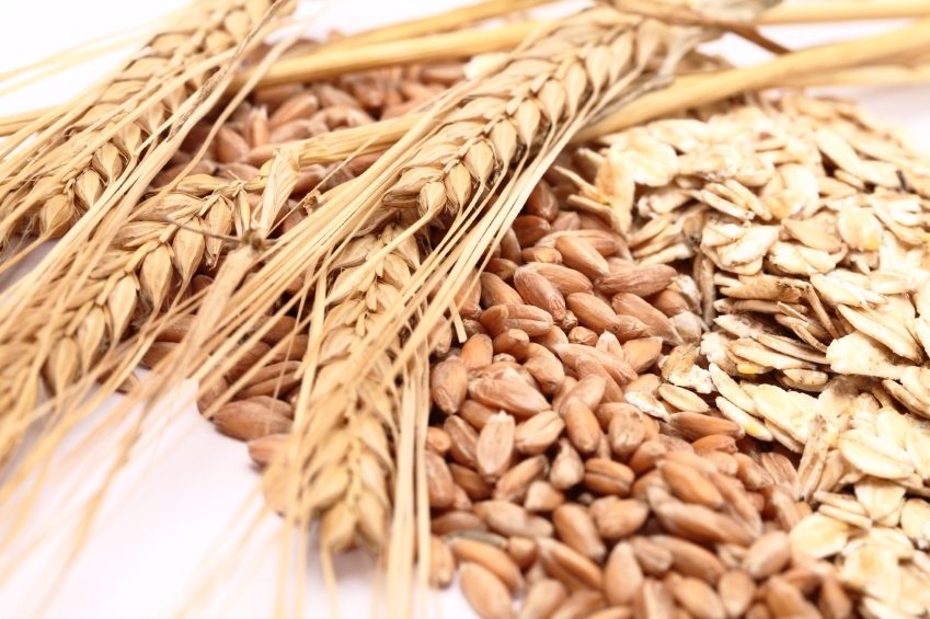 Oats and grain_iStock_000017197173Small