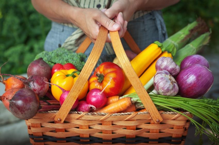 Organic food_iStock_000017358071Small