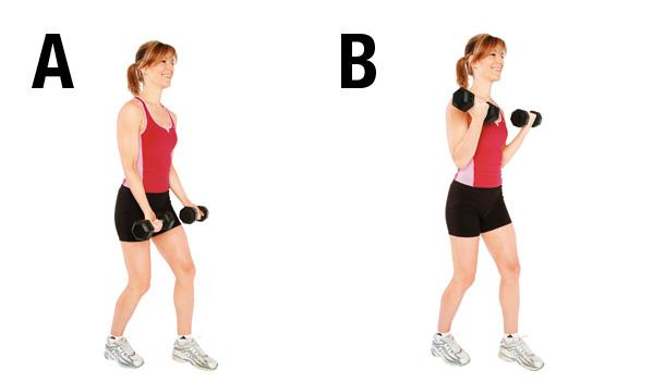 Exercice 5 Flexion des bras poids