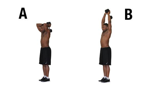 Extension avant-bras