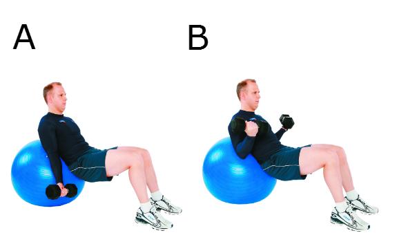 Flexion des avant-bras incline