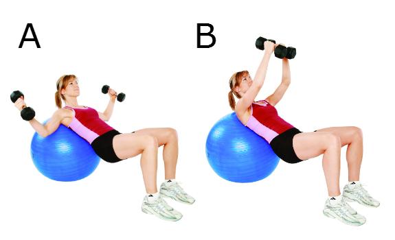 Rotation interne des bras