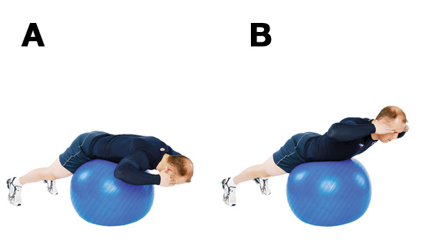 extension-dorsale