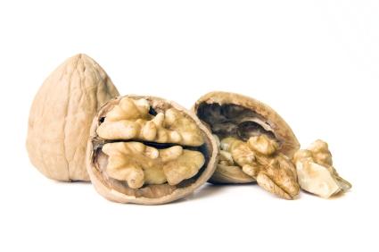 Walnuts_iStock_8766695