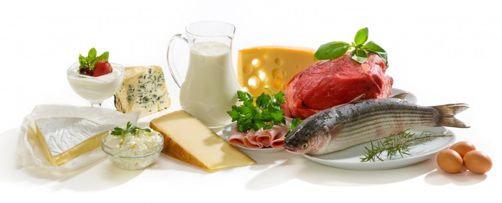 rapport proteine calorie