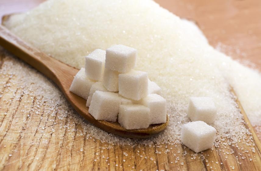 Le sucre, principal responsable de l'obésité?