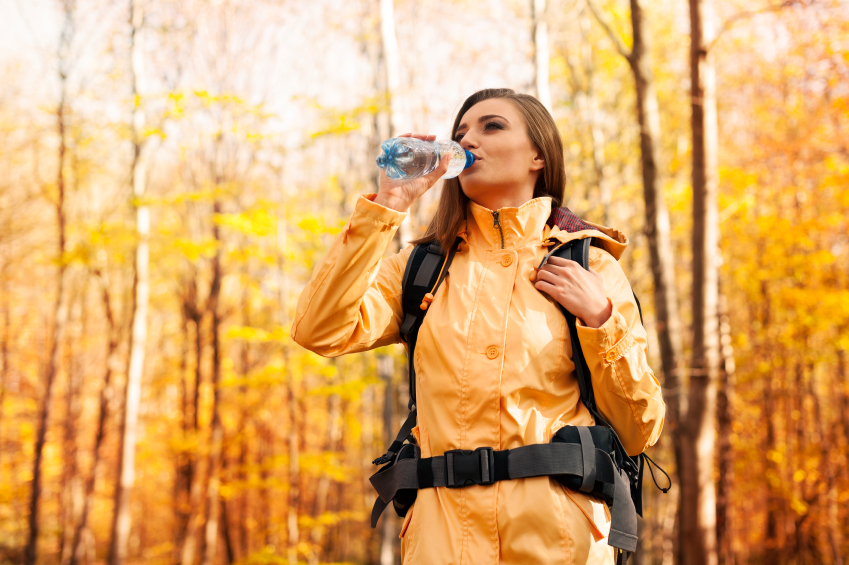 Quatre activités à faire en automne