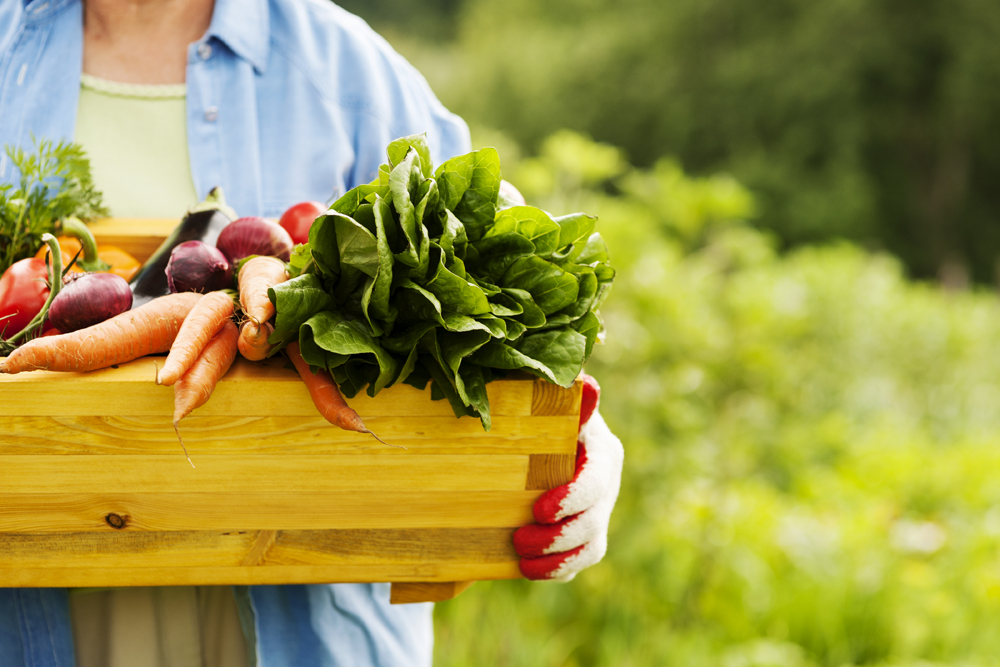Why eat locally grown and organic foods?