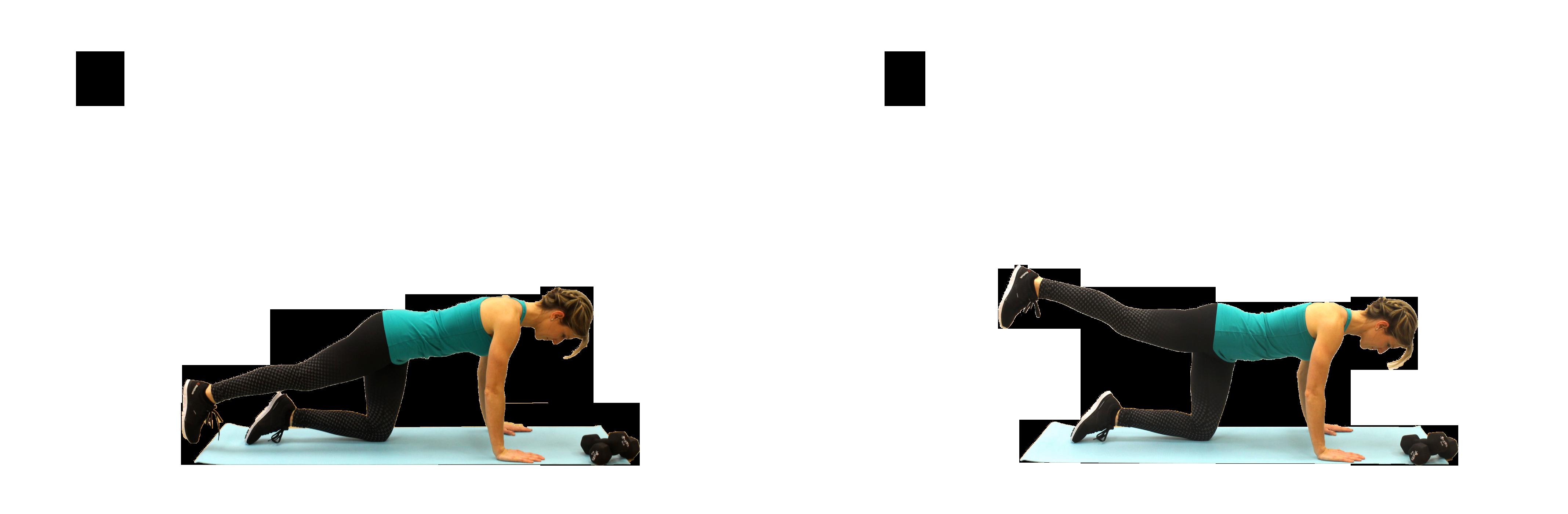 05_Elevation-de-la-jambe-en-position-planche