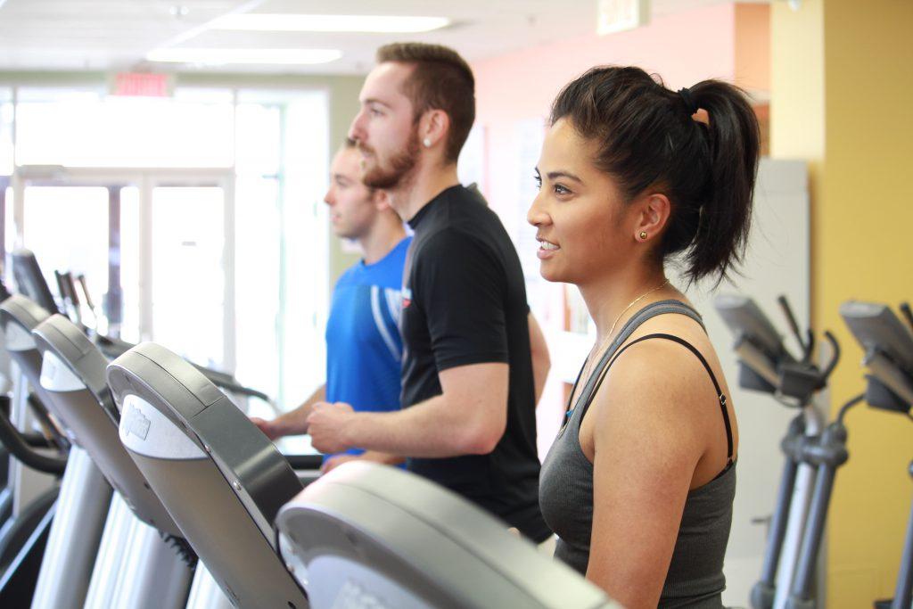 gym fitness plan