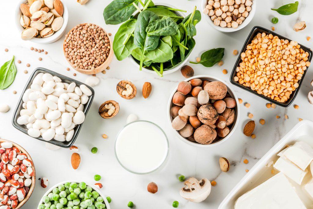 Diverse source de protéines végétales