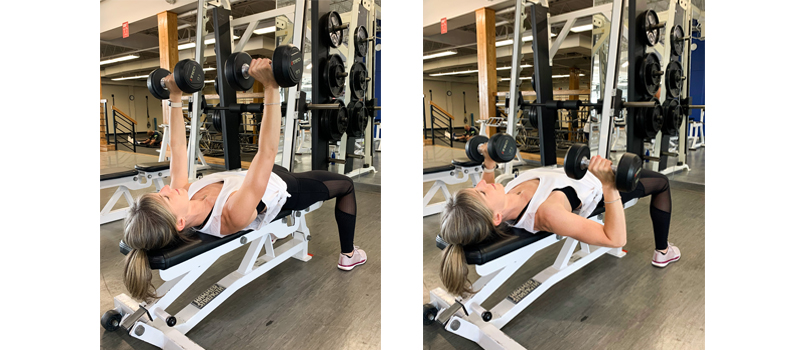 chest-press-upper-body